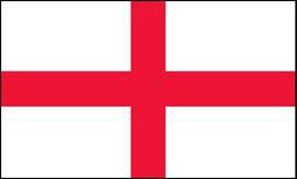 COSG-flag