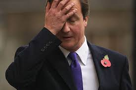 Cameron looking bemused